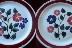 836_compared_to_linda_luncheon_plates
