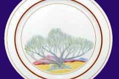 smoketree_dinner_plate