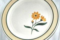 t-680_multi-aster_dinner_plate
